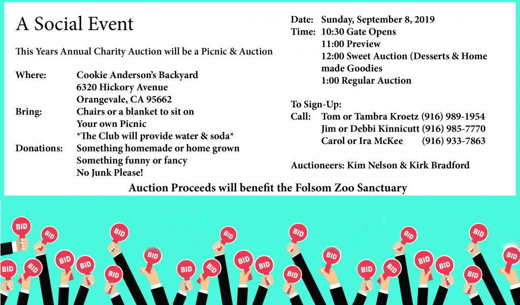 2019 SVR Charity Auction @ Orangevale | California | United States